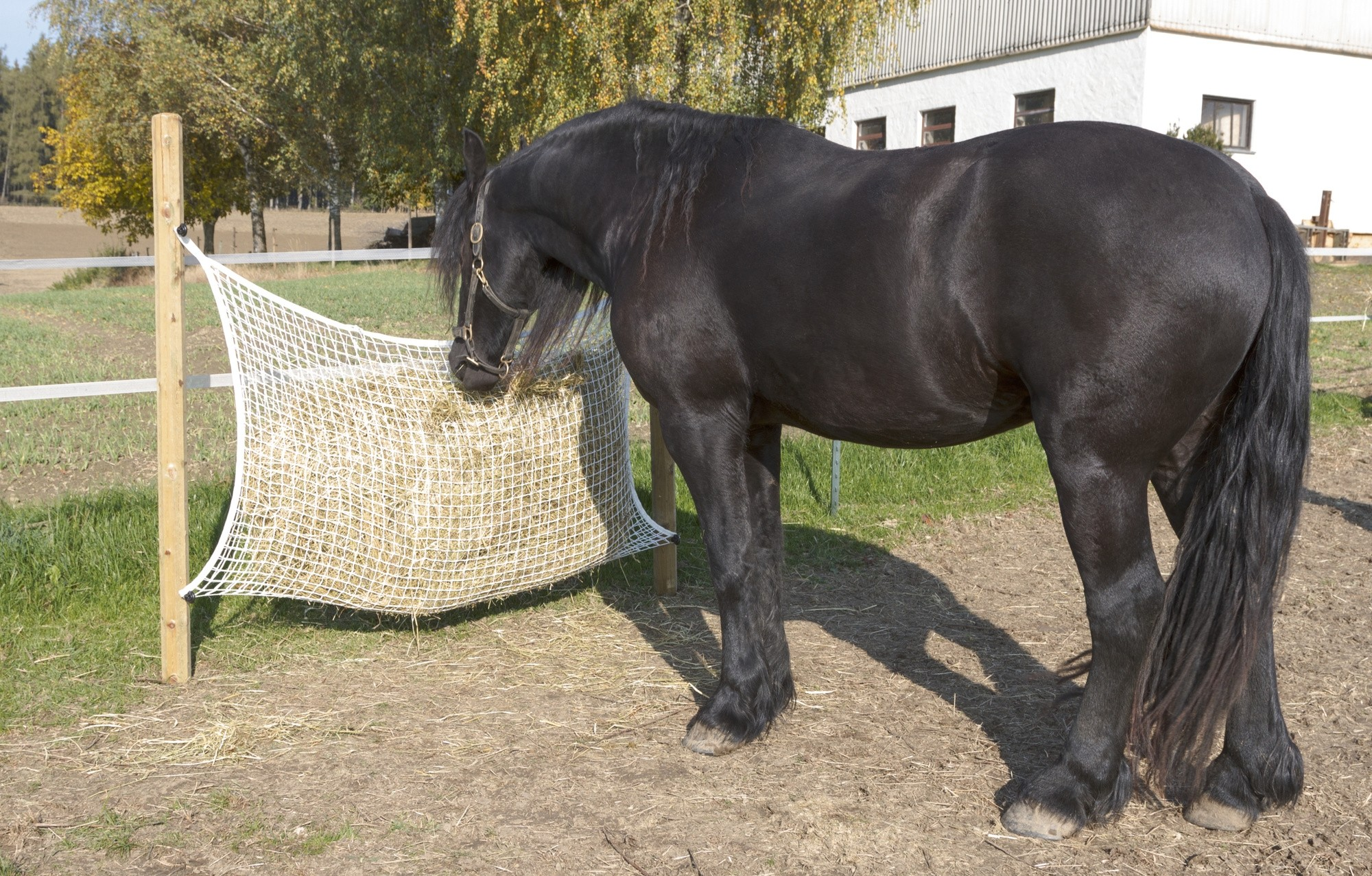 Heunetz 160 x 100 cm