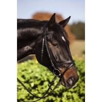 Trensenzaum Standard schwarz Pony